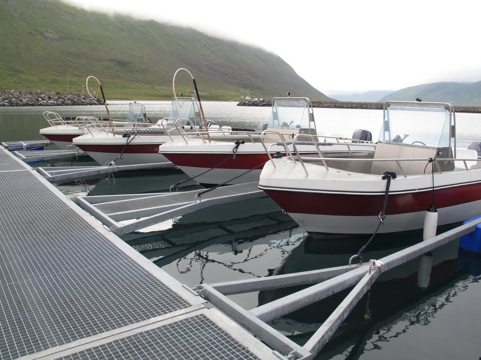 Crazy-Cod Camp Boats